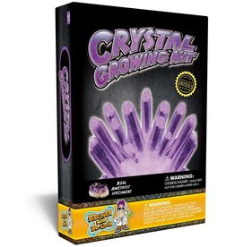 Discover with Dr Cool Crystal Growing Purple