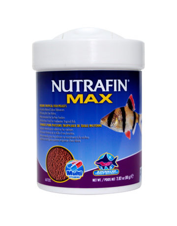 Nutrafin Nutrafin Max granulés pour poisson tropicaux