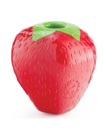 Planet Dog Planet Dog orbee-tuff fraise .