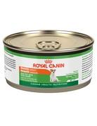 Royal Canin Royal canin conserve peau saine beauté 165 g (24).