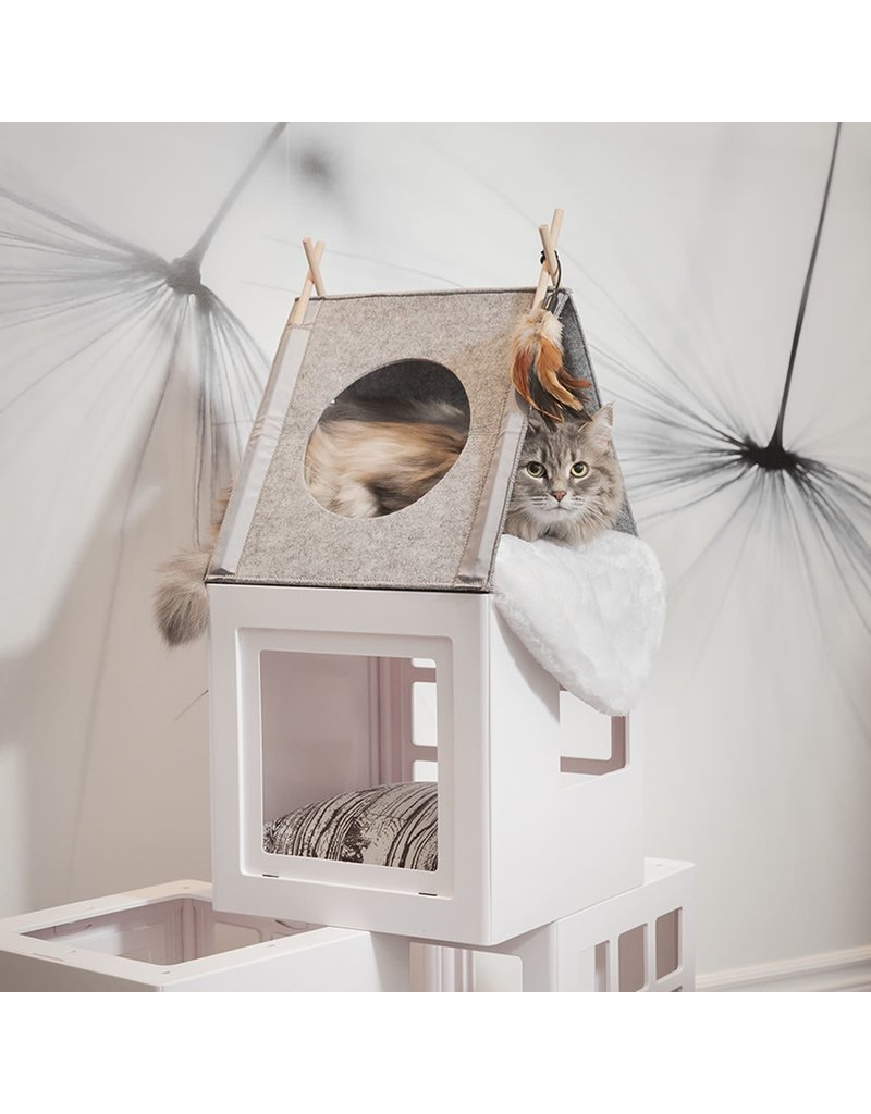 Be one breed Be one breed tipi pour chat .