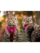 Rc pets Rc pets harnais aventure chat framboise grand