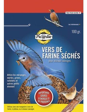 Picardie Picardie vers de farine séchés (24)