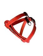 Ezydog Ezydog chest plate harnais rouge