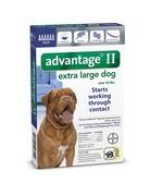 Advantage Advantage II chien de très grande taille ,