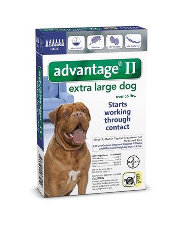 Advantage Advantage II chien de très grande taille , .