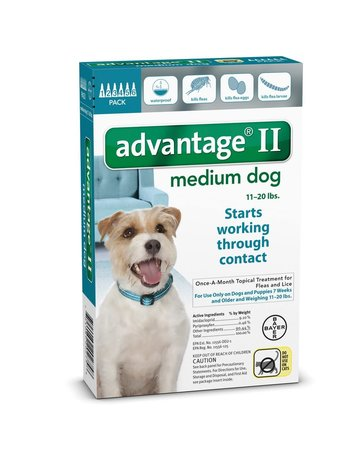 Advantage Advantage II chien de taille moyenne , .
