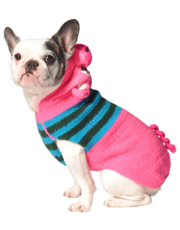 Chilly dog Chilly dog tricot cochon TTgrand .