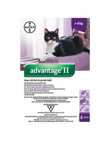 Advantage Advantage II chat adulte de grande taille  ,