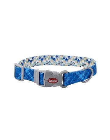 Coastal Sublime chien bleu chevron/flèche