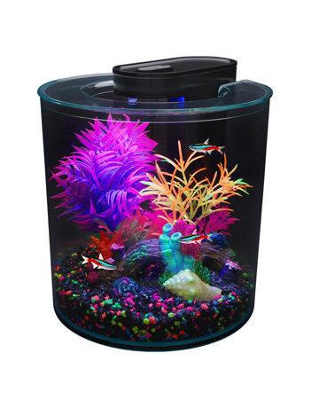 Marina Marina iglo aquarium équipé