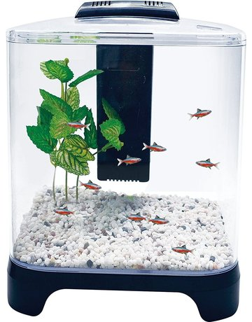 Pennplax Penn-plax aquarium 1.5 gallon aquarium