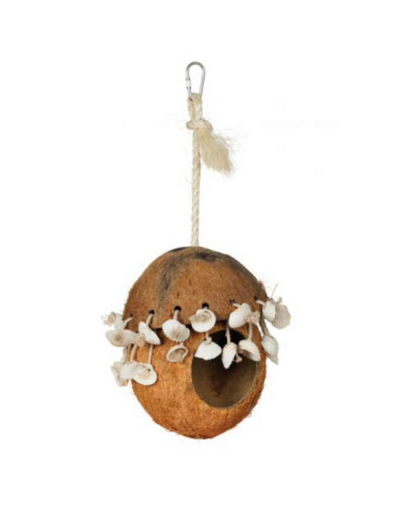 Ph prevue pet products Ph prevue pet products noix de coco avec coquillages //