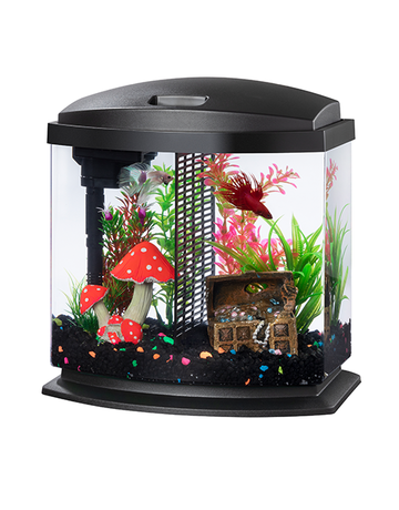 Aqueon Aqueon aquarium pour betta 2,5 gallons //