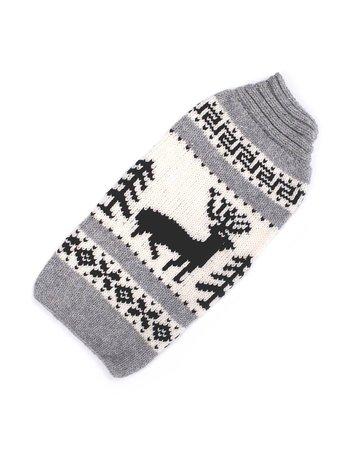 Chilly dog Chilly dog tricot rêne TTTgrand .
