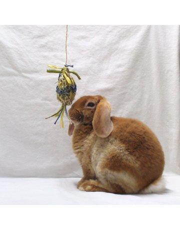 Domaine Animal Domaine Animal pinata à saveurs de pomme//