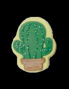 Bosco & Roxy's Bosco & Roxy's cactus (12)