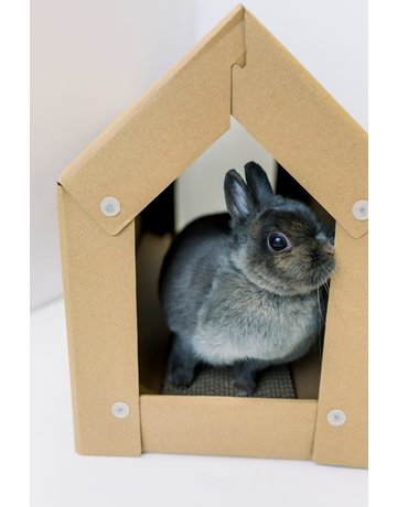 Les petits lapins d'amour Les petits lapins d'amour le maison de carton