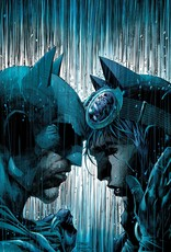 DC Comics Batman The Bat and the Cat 80 Years of Romance HC