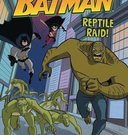 Stone Arch Books DC Amazing Adventures of Batman Reptile Raid