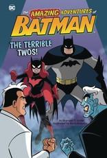 Stone Arch Books DC Amazing Adventures of Batman The Terrible Twos