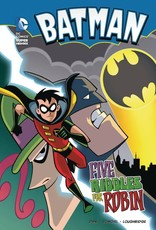 Stone Arch Books DC Super Heroes - Batman: Five Riddles for Robin GN