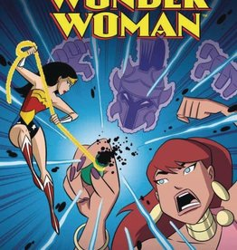 Stone Arch Books DC Super Heroes Wonder Woman and the Pandora Plot