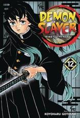 Viz Media Demon Slayer Kimetsu No Yaiba Vol 12