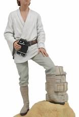 Diamond Select Toys Star Wars Premier Collection Luke Dreamer Statue