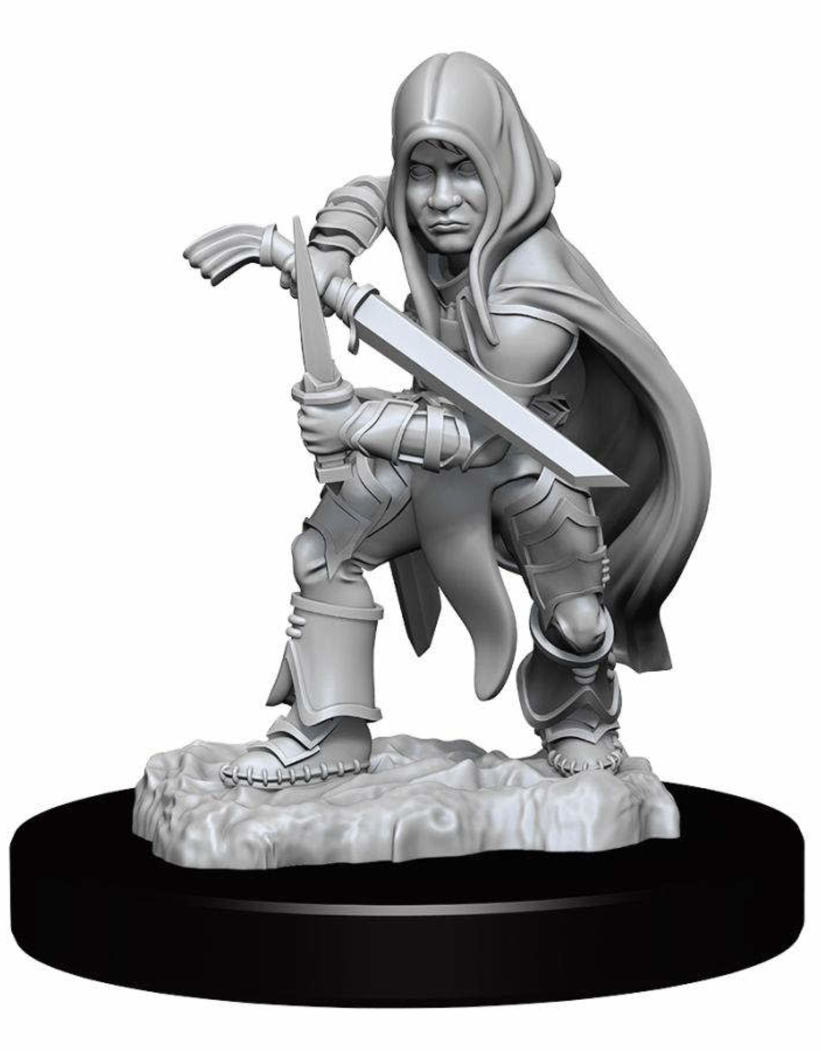 Wizkids Dungeons And Dragons Nolzur's Marvelous Miniatures: W13 Male Halfling Rogue