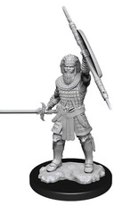 Wizkids Dungeons And Dragons Nolzur's Marvelous Miniatures: W13 Male Human Fighter