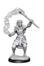 Wizkids Dungeons And Dragons Nolzur's Marvelous Miniatures: W13 Female Firbolg Druid