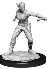 Wizkids Dungeons And Dragons Nolzur's Marvelous Miniatures: W13 Female Shifter Rogue Female