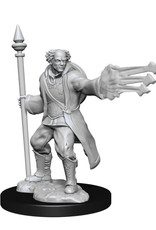 Wizkids Dungeons And Dragons Nolzur's Marvelous Miniatures: W13 Male Multiclass Cleric-Wizard