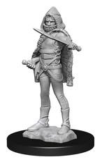 Wizkids Dungeons And Dragons Nolzur's Marvelous Miniatures: W13 Darkling Elder And Darklings