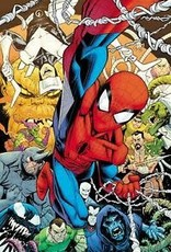 Marvel Comics AMAZING SPIDER-MAN #850 BY RYAN OTTLEY POSTER