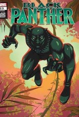Marvel Comics Black Panther #23 Souza Black Panther Black History Var