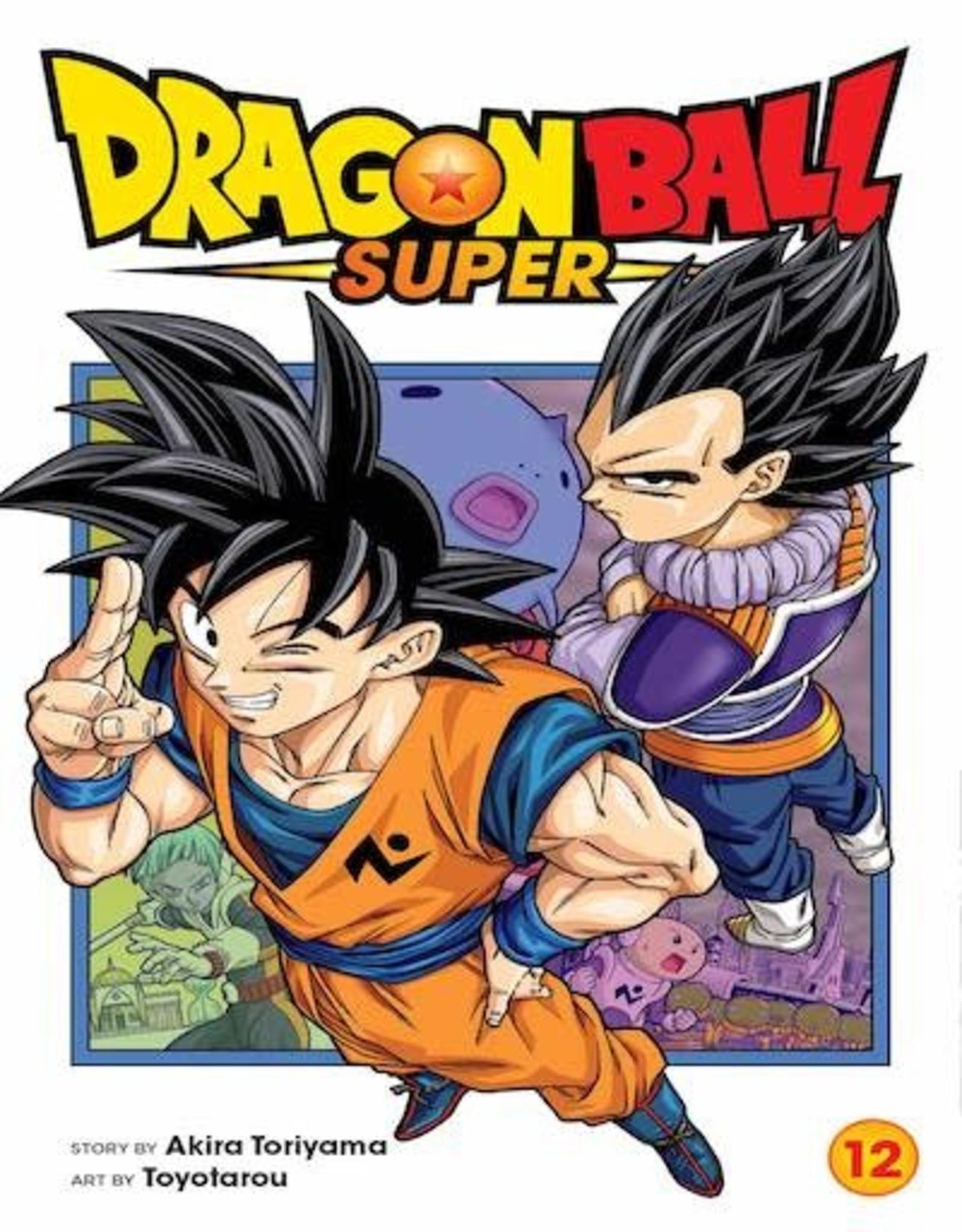 Viz Media Dragon Ball Super Vol 12 GN