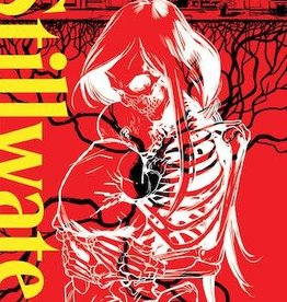 Image Comics Stillwater By Zdarsky & Perez Vol 01 TP