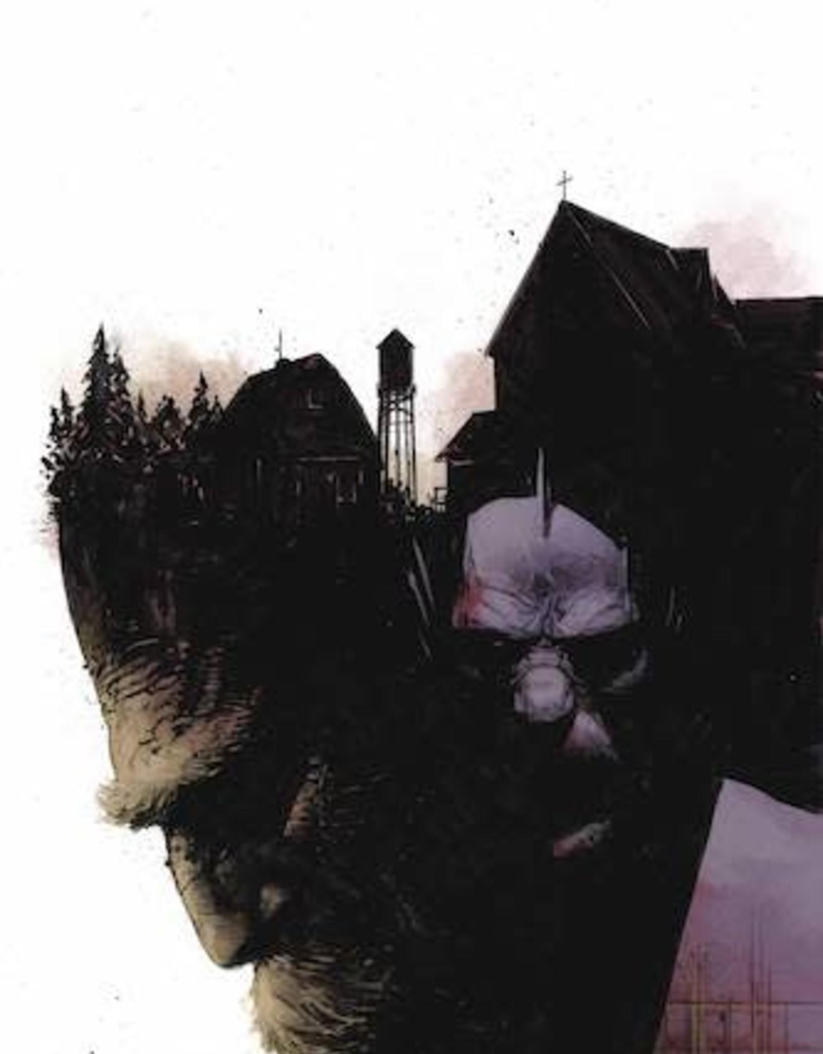 Dark Horse Comics Black Hammer Visions #3 Cvr C Zaffino