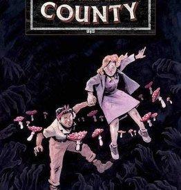 Dark Horse Comics Tales From Harrow County Fair Folk #1 Cvr A Schnall