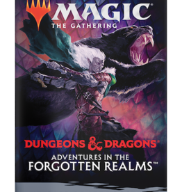 Wizards of the Coast Magic the Gathering: Adventures in the Forgotten Realms Draft Booster Pack