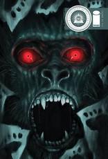 Image Comics Department Of Truth #11 Cvr B Henderson