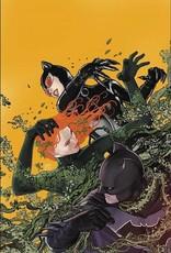 DC Comics Batman TP Vol 06 Bride Or Burglar