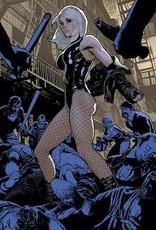 DC Comics Deathstroke Inc #1 Cvr C Adam Hughes Card Stock Var