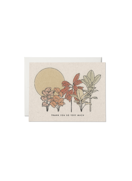 Red Cap Cards Desert Plants Thank You