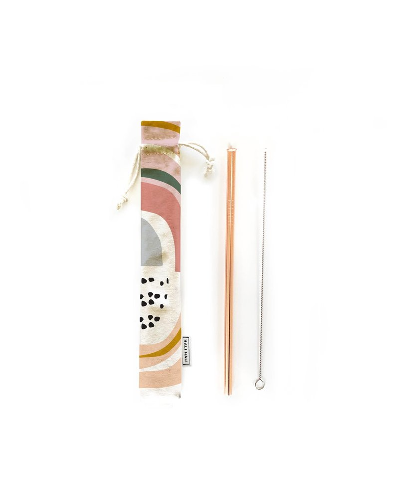 Hali Hali LLC Prisim 3 Piece Reusable Straw Set