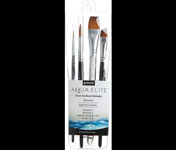 Princeton Professional Set Princeton Aqua Elite 4 Pack