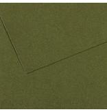 CANSON MI-TEINTES 8.5x11 IVY