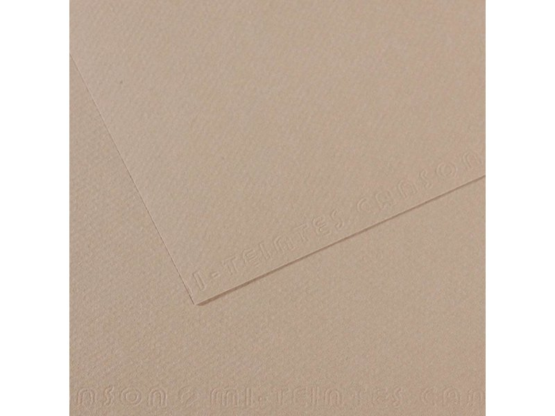 CANSON MI-TEINTES 19x25 FLANNEL